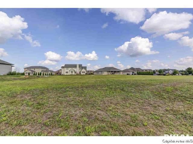 300 Ramblewood, Chatham, IL 62629 (MLS #CA1004459) :: BN Homes Group