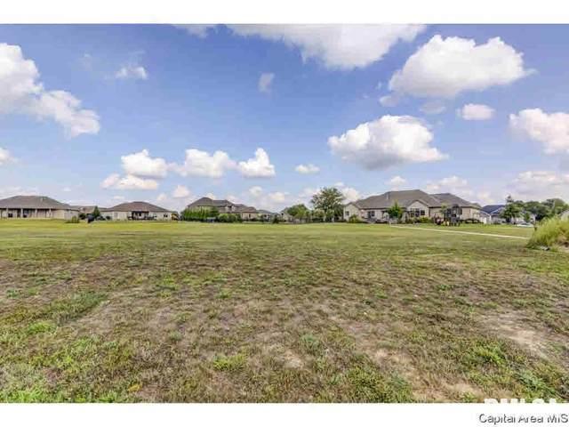 314 Ramblewood, Chatham, IL 62629 (MLS #CA1004460) :: BN Homes Group