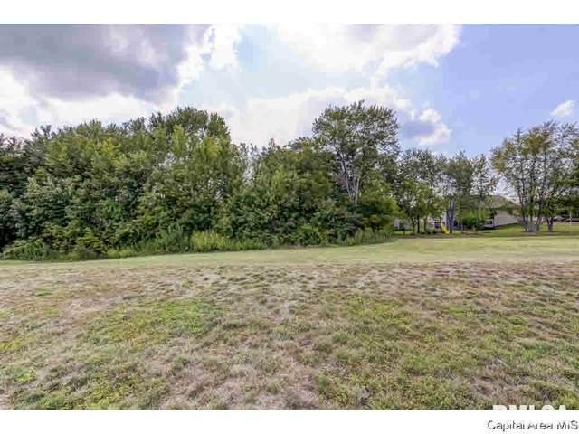 319 Ramblewood, Chatham, IL 62629 (MLS #CA1004461) :: BN Homes Group