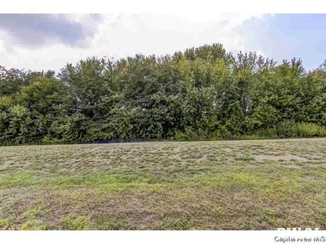 323 Ramblewood, Chatham, IL 62629 (MLS #CA1004463) :: BN Homes Group