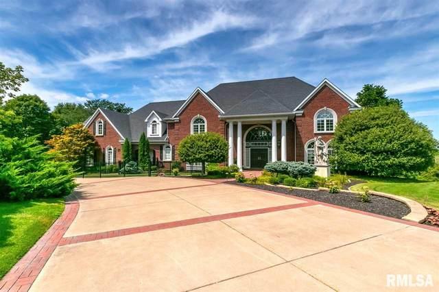 9 Eagle Pointe Pass, Rapids City, IL 61278 (#QC4217924) :: Killebrew - Real Estate Group