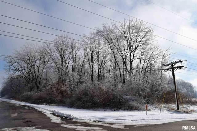 Manson Heights Road, Dahinda, IL 61428 (#CA1004493) :: RE/MAX Preferred Choice