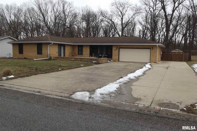 20 Holiday Lane, Riverton, IL 62561 (#CA1004608) :: RE/MAX Professionals