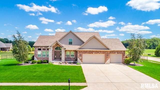 14 Grey Wolf Court, Morton, IL 61550 (#PA1222054) :: Nikki Sailor | RE/MAX River Cities
