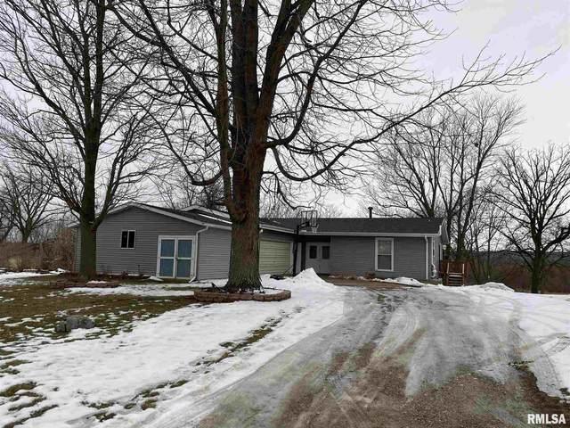 33 Bayshore Drive, Lacon, IL 61540 (#PA1222085) :: Killebrew - Real Estate Group