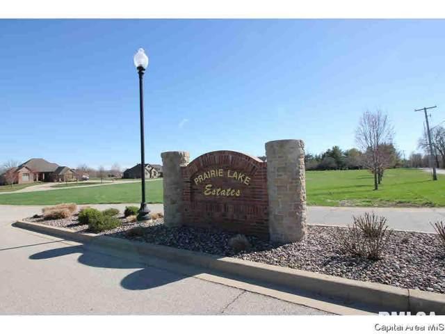 804 Prairie Lake Drive, Sherman, IL 62684 (#CA1004986) :: RE/MAX Professionals