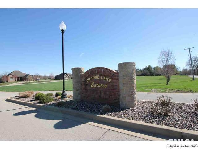 720 Prairie Lake Drive, Sherman, IL 62684 (#CA1004987) :: RE/MAX Professionals