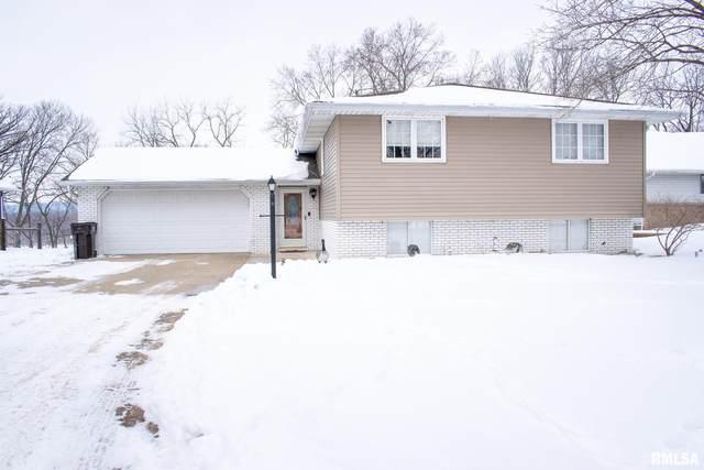 11 Bayshore Drive, Lacon, IL 61540 (#PA1222404) :: Killebrew - Real Estate Group