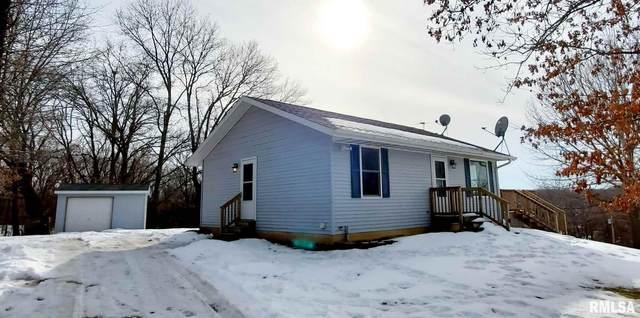 245 North Shore Place, Dahinda, IL 61428 (#PA1222516) :: Killebrew - Real Estate Group