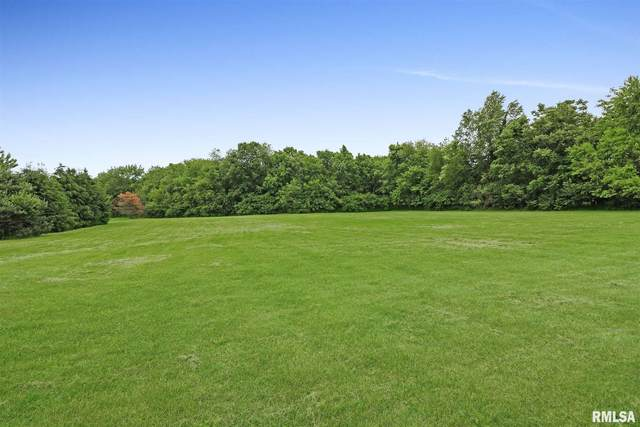 Upper Spring Bay, East Peoria, IL 61611 (#PA1222543) :: The Bryson Smith Team