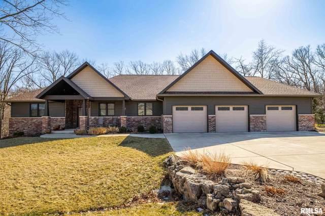 29987 Woodfield Drive, Mackinaw, IL 61755 (#PA1222821) :: Killebrew - Real Estate Group