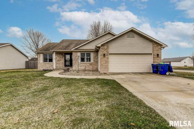 802 Money Tree Drive, Chatham, IL 62629 (#CA1005592) :: Nikki Sailor | RE/MAX River Cities