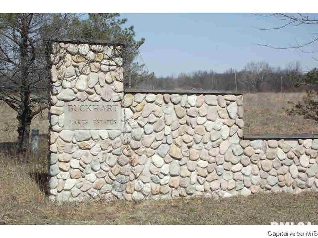 Lot 14 Buckhart Lake Estates, Mechanicsburg, IL 62563 (#CA1006116) :: RE/MAX Professionals