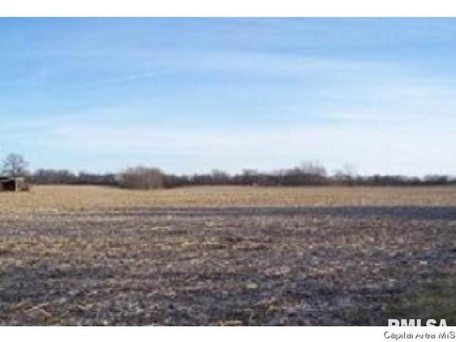 4255 Bissell Road, Springfield, IL 62707 (#CA1006138) :: Killebrew - Real Estate Group