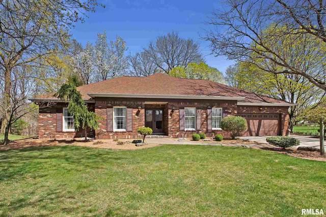 134 Rue Vue Du Lac Drive, East Peoria, IL 61611 (#PA1223938) :: Killebrew - Real Estate Group