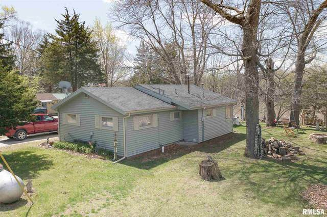 38 Willits Lane, Keithsburg, IL 61442 (#CA1006328) :: Kathy Garst Sales Team