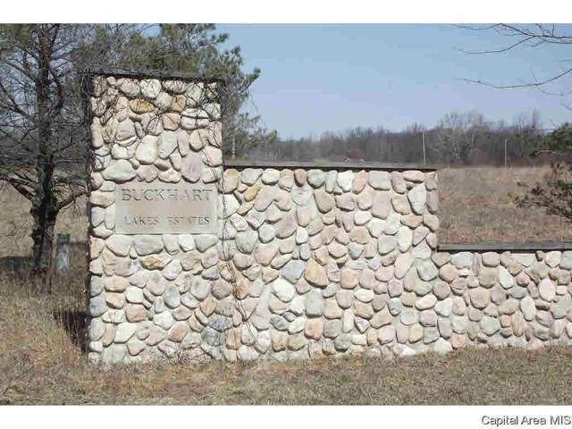 Lot 1 Buckhart Lake Estates, Mechanicsburg, IL 62563 (#CA1006446) :: RE/MAX Professionals
