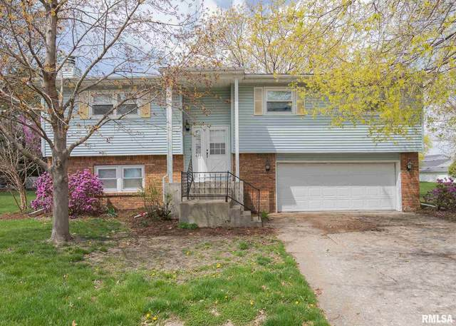 823 Meadow Lawn Drive, Geneseo, IL 61254 (#QC4220809) :: Nikki Sailor | RE/MAX River Cities