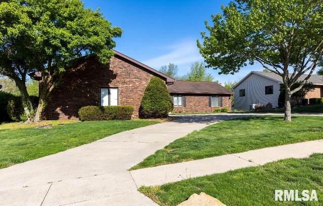 205 Thames River Road, Springfield, IL 62711 (#PA1224604) :: Killebrew - Real Estate Group