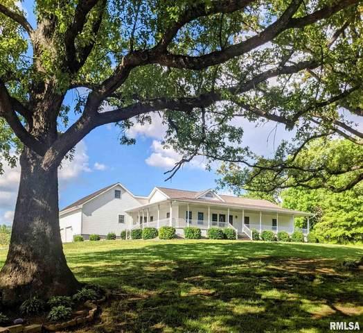 12371 S Park Road, Benton, IL 62812 (#QC4221285) :: Killebrew - Real Estate Group