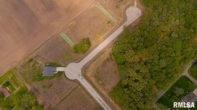 2 Lucas Lane, Taylorville, IL 62568 (#CA1006886) :: Killebrew - Real Estate Group