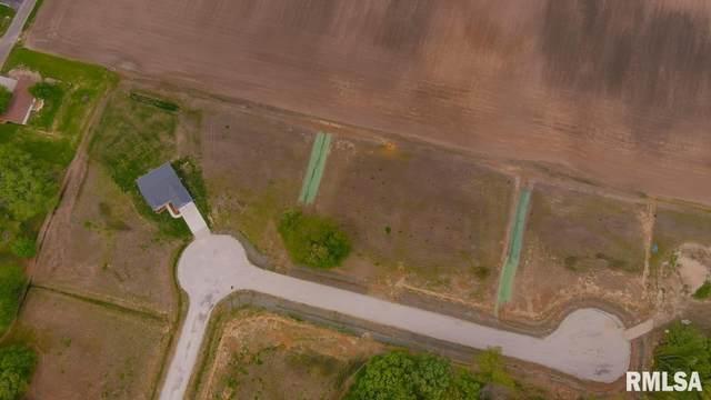 5 Lucas Lane, Taylorville, IL 62568 (#CA1006889) :: Killebrew - Real Estate Group