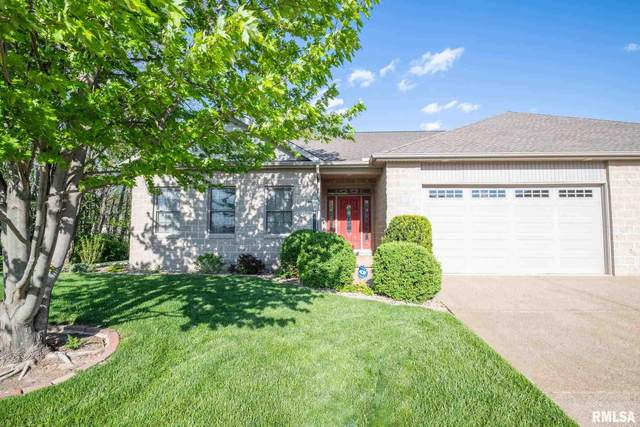 11230 N Oakwood Drive, Peoria, IL 61615 (#PA1224703) :: The Bryson Smith Team