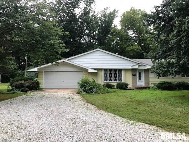14506 State Route 78, Havana, IL 62644 (MLS #CA1007046) :: BN Homes Group