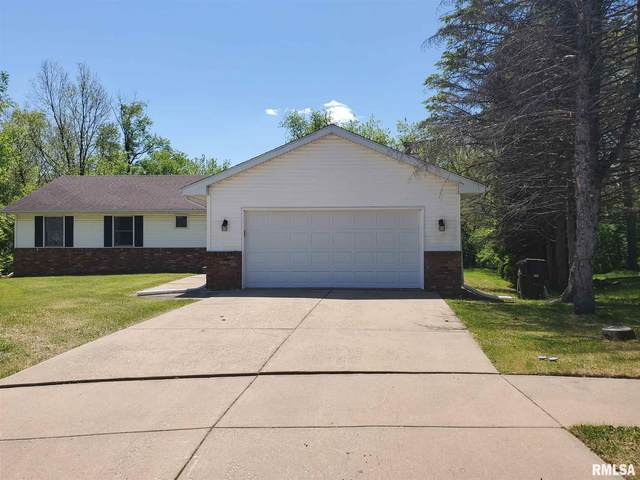 2830 W Briarcliff Lane, Peoria, IL 61604 (MLS #PA1224914) :: BN Homes Group