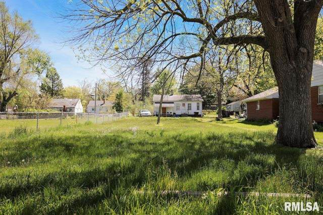 1534 S Idaho Street, Peoria, IL 61605 (#PA1225276) :: Paramount Homes QC