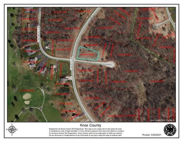 4008 Oak Run Drive, Dahinda, IL 61428 (#PA1225362) :: Paramount Homes QC