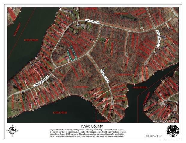 151 Lakecrest Place, Dahinda, IL 61428 (#PA1225659) :: RE/MAX Professionals