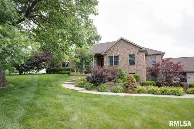 2881 Powell Court, Cantrall, IL 62625 (#CA1007697) :: RE/MAX Professionals