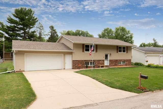 104 Clover Drive, COLONA, IL 61241 (#QC4222865) :: Paramount Homes QC