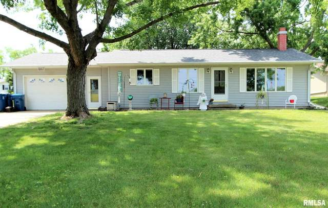 1007 N Lime Street, Albany, IL 61230 (#QC4223041) :: Killebrew - Real Estate Group