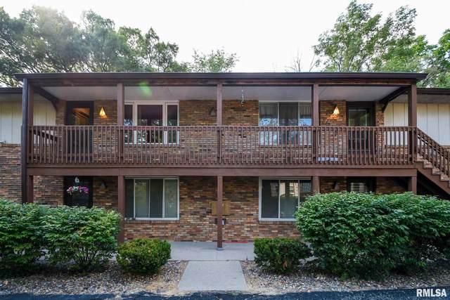 169 E Oak Cliff Court, Peoria, IL 61614 (#PA1226153) :: RE/MAX Professionals