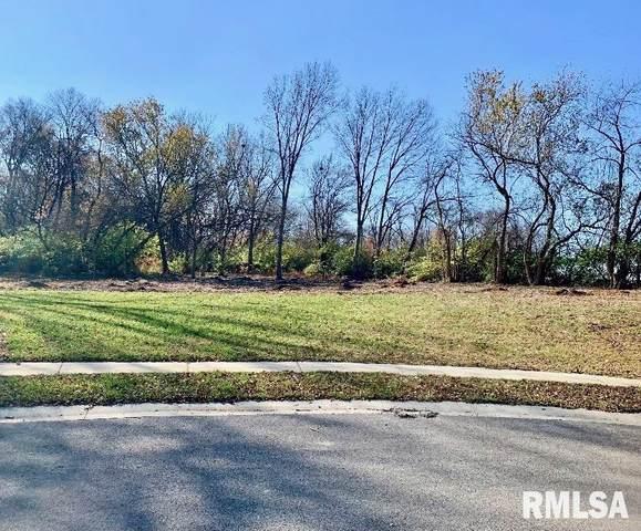 617 Rock River Road, Springfield, IL 62703 (#CA1008023) :: RE/MAX Preferred Choice