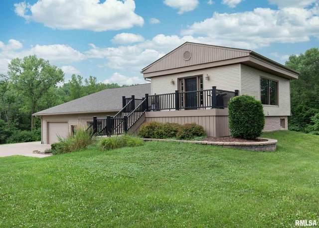 1734 7TH Avenue, Rapids City, IL 61278 (#QC4223327) :: Paramount Homes QC