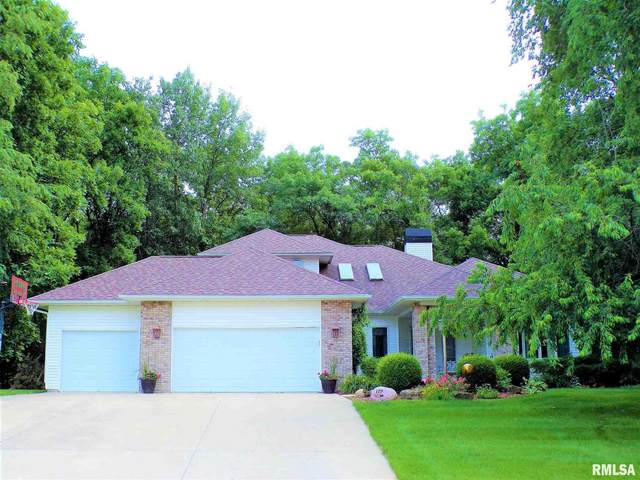 119 Oakview Drive, Knoxville, IL 61448 (#CA1008283) :: Kathy Garst Sales Team