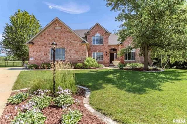 2201 W Pinnacle Drive, Dunlap, IL 61525 (#PA1226644) :: Paramount Homes QC