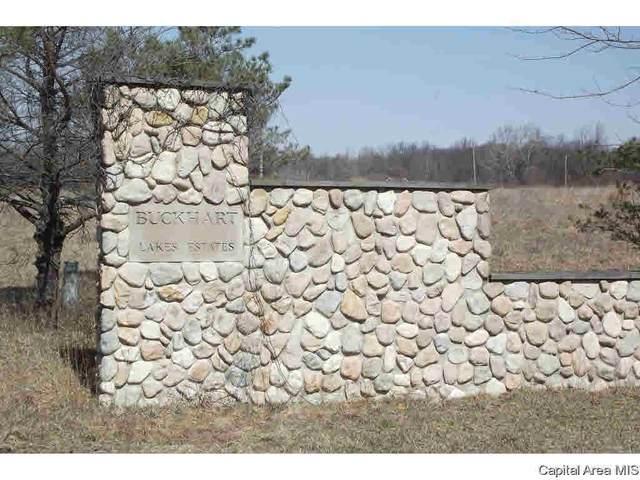 Lot Buckhart Lake Estates Street, Mechanicsburg, IL 62563 (#CA1008357) :: RE/MAX Preferred Choice