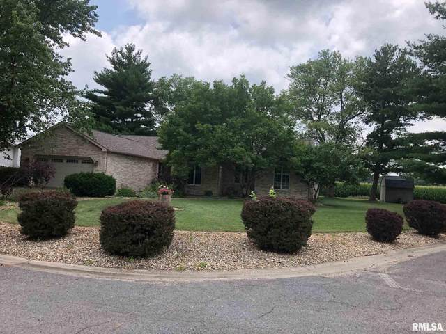 529 Blackhills Drive, Taylorville, IL 62568 (#CA1008362) :: Kathy Garst Sales Team