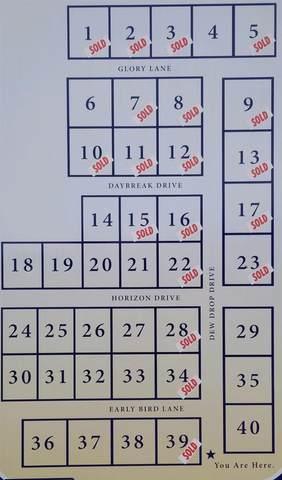 Lot 35 Dew Drop Drive, Marion, IL 62959 (#QC4223918) :: Paramount Homes QC