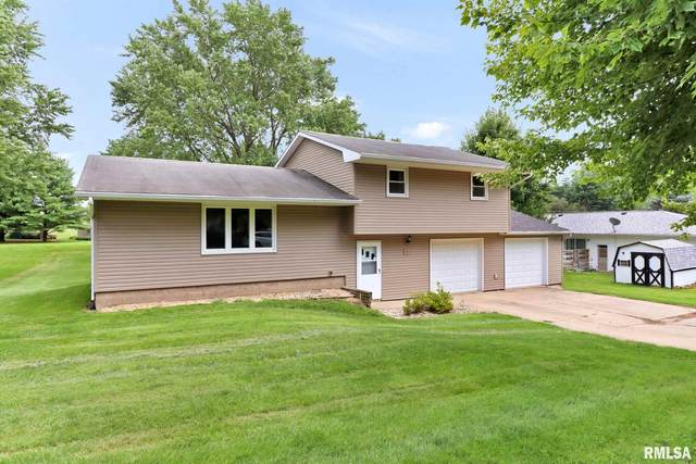 505 N Lakeview Avenue, Elmwood, IL 61529 (#PA1226867) :: RE/MAX Professionals