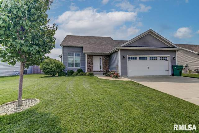 1509 Prairie Vista Drive, Chatham, IL 62629 (#CA1008618) :: The Bryson Smith Team