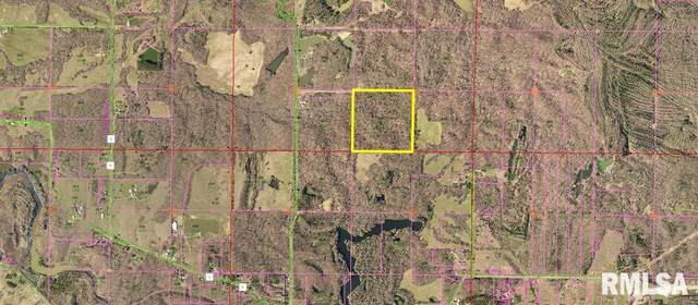 TBD Absher Lane, Stonefort, IL 62987 (#QC4224468) :: RE/MAX Preferred Choice