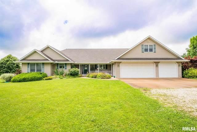 1121 N Nofsinger Road, Metamora, IL 61548 (#PA1227270) :: Paramount Homes QC