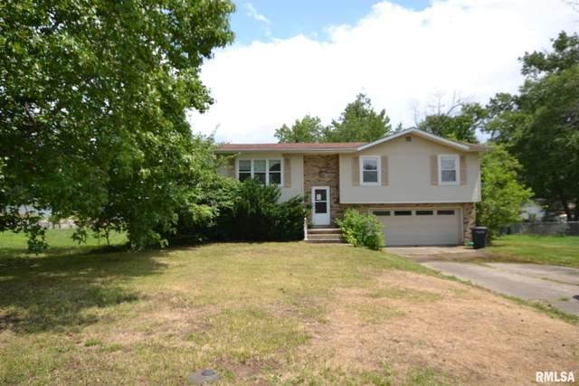 808 Apricot Avenue, Mt Vernon, IL 62864 (#CA1008806) :: Paramount Homes QC