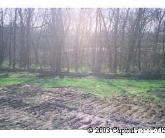 13 Deer Meadow Lane, Petersburg, IL 62675 (#CA1008841) :: RE/MAX Professionals
