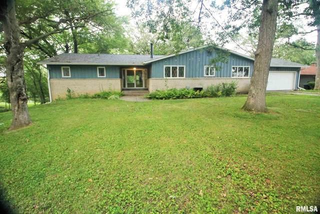 12 Lake Lynnwood, Lynn Center, IL 61262 (#QC4225398) :: Paramount Homes QC